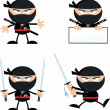 Angry Ninja Warrior Characters 1 Flat Design  Collection Set — Stock Photo #43087273