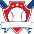 Baseball Shield Banner — Stock Photo #45735111