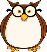 Wise Owl Teacher Cartoon Character With Glasses — Stock Photo
