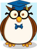 Wise Owl Teacher With Glasses And Graduate Cap — Stock Photo