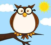 Wise Owl On Tree Cartoon Character — Stock Photo