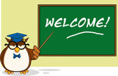 Wise Owl Teacher Cartoon Character In Front Of School Chalk Board With Text — Stockfoto