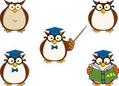 Wise Owl Teacher Cartoon Character 1. Collection Set — Стоковое фото