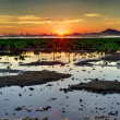 Wetland Sunset — Stock Photo #17123657