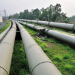 Stock Photo: Long water pipes