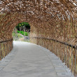 Stock Photo: Bamboo tunnel