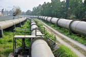 Long water pipes — Stock Photo