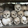 Stock Photo: Skulls and bones in Killing field, Cambodia