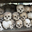 Stockfoto: Skulls and bones in Killing field, Cambodia