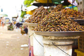 Notorycznie błąd jedzenia z azji — Zdjęcie stockowe