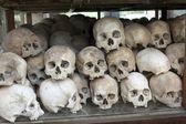 Schedels en beenderen in doden veld, cambodja — Stockfoto