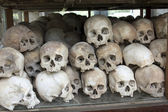 Skulls and bones in Killing field, Cambodia — Stockfoto