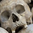 Skulls and bones in Killing field - Stock Photo
