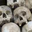 Skulls and bones in Killing field — Zdjęcie stockowe #14877273