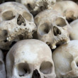Stok fotoğraf: Skulls and bones in Killing field