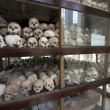 Stock Photo: Skulls and bones in Killing field