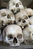 Skulls and bones in Killing field — Stock Photo