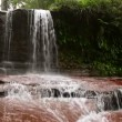 Stock Video: Waterfall in Borneo ranforest river
