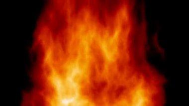 Fiery background animation of powerful fire like wood burn — Stock Video