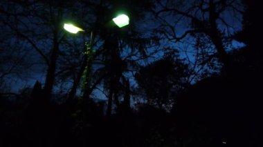 Erschreckende szene seltsame farbe licht lämmer in der nacht in landschaft — Stockvideo