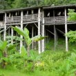 Stock Video: Tribal borneo houses