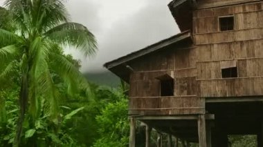 Tribal borneo houses — Stock Video