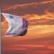 Euro banknote money flag at sunset — Stock Video