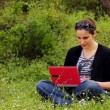 Beautiful girl using computer in countryside — Stock Video