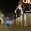 Stock Video: Historical Palace at night