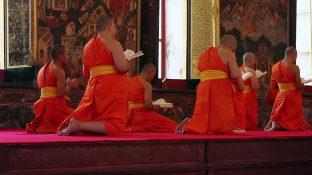 Moines bouddhistes prient au temple — Vidéo