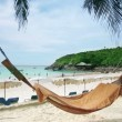 Stock Video: Empty hammock in exotic beach