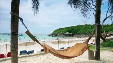 Empty hammock in an exotic beach — Stock Video