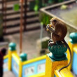 Monkeys in batu cave temple in malaysia - Stock Photo