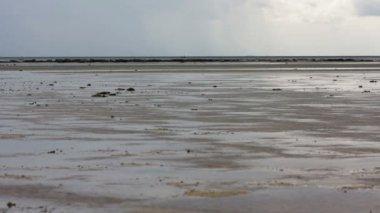 Low tide — Stockvideo