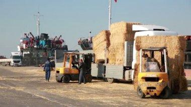 Hay bales loaded onto lorries, harbour — Stock Video