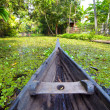 Canoe at kerala backwaters, india — Stock Photo