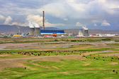 Animals grazing next to power plant — ストック写真