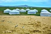 монгольский гер в центральной монголии — Стоковое фото