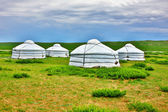 Mongolian Yurt, Ger Camp — Stock Photo