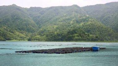 Jezioro pokhara — Wideo stockowe