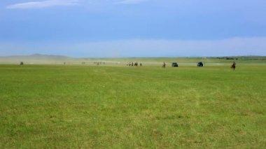 Naadam Festival Horse Race — Wideo stockowe