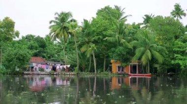 Kerala Backwaters — Stock Video