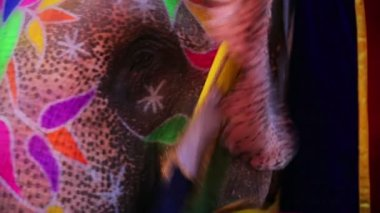 Elefante pintado — Vídeo de stock
