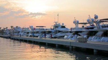 Yatchs marina — Stock video