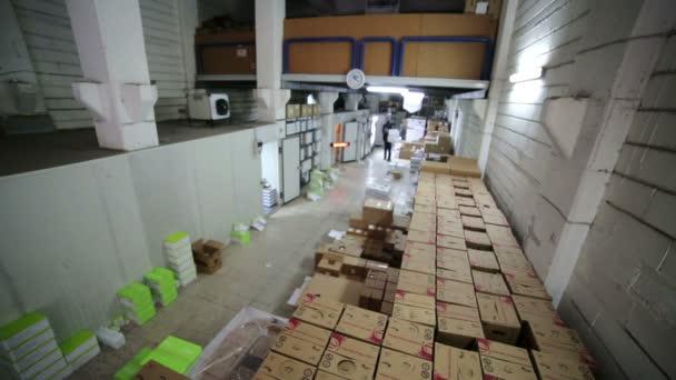Hombre que trabajaba en la sala de almacenamiento — Vídeo de stock