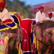 Traditionally painted elephants — Stock Video #39238147