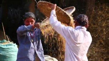 Local woman sieving, bhaktapur — Stock Video