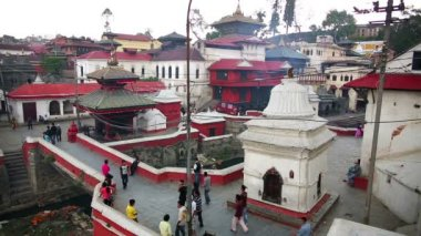 Pashupatinath temple general view — Stock Video