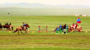 Mongolian Cavalry at Naadam Festival — Stock Video