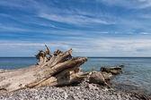 Baltic Sea — Stock Photo